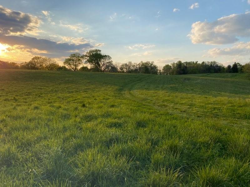 Land for sale – 400  Bear Creek Pike   Columbia, TN