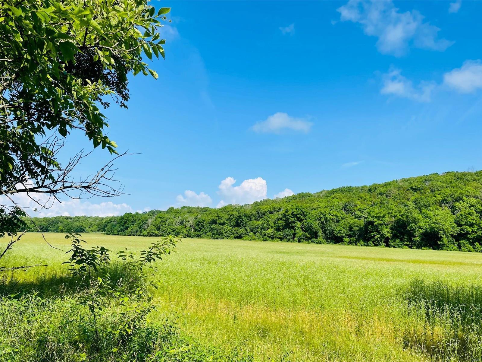 Farm for sale – 18073  Maries Road 525   Rolla, MO