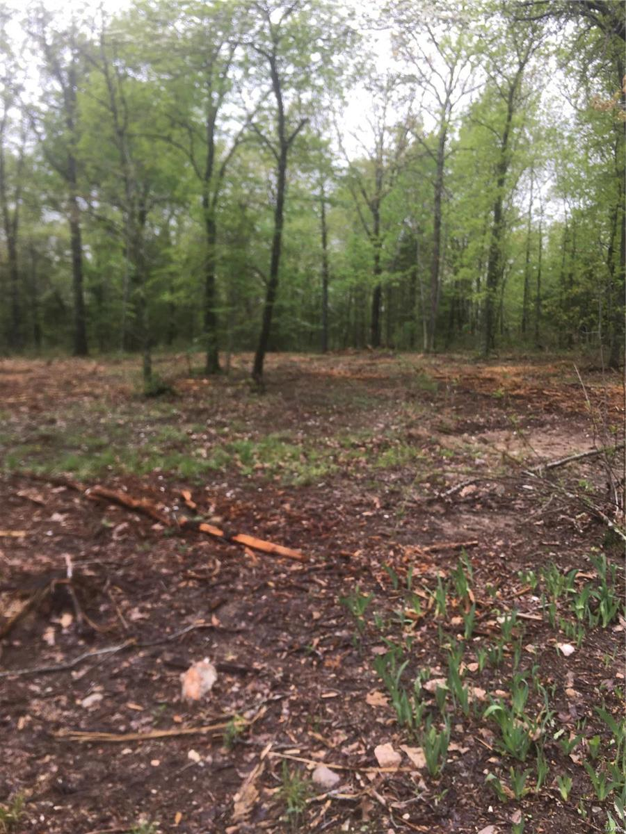 Land for sale – 23255  Hwy T   Waynesville, MO