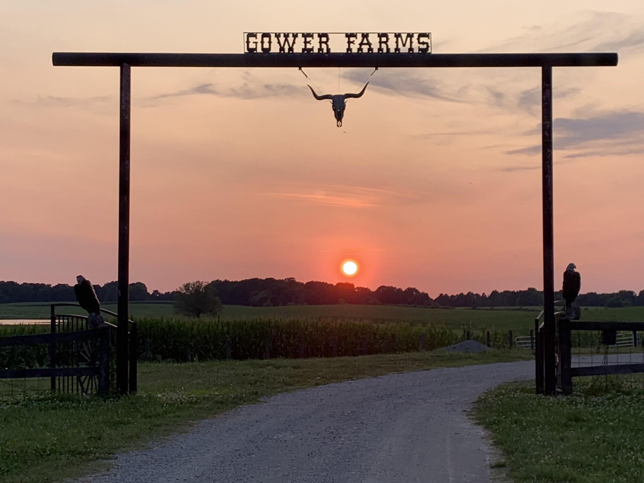 Farm for sale – 9177  Buttermilk Ridge Rd   Lawrenceburg, TN