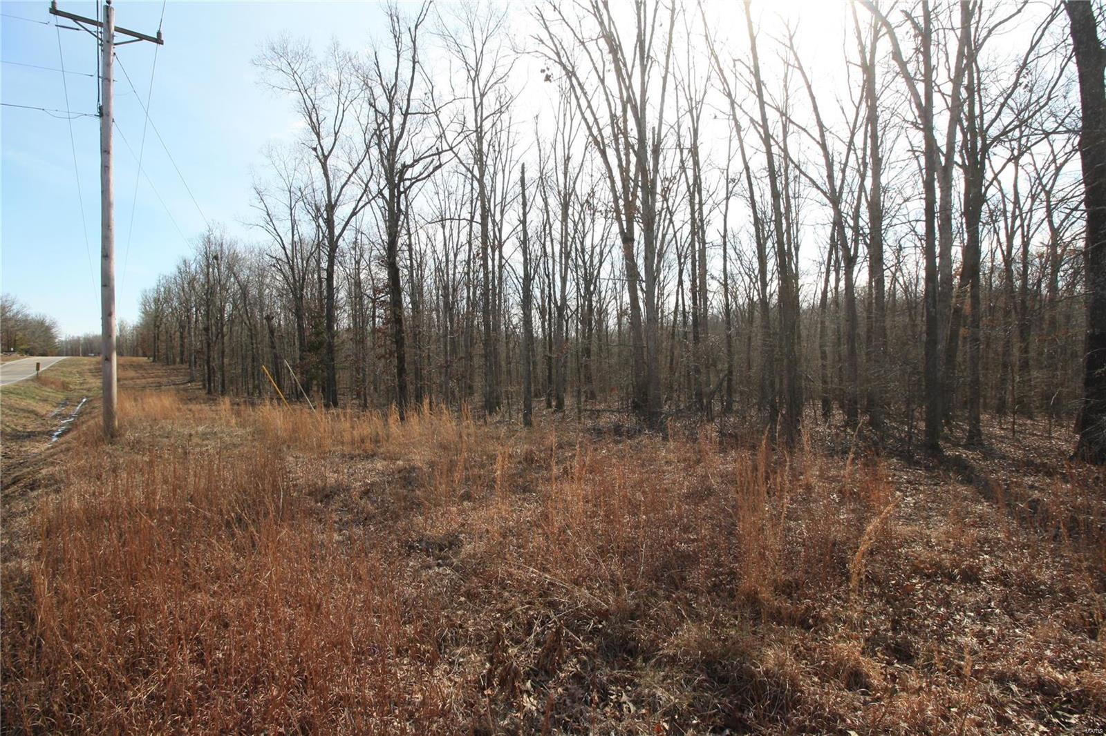 Farm/Ranch/Land for sale – 0  Lot 4 Holiday Hills Dev   Wappapello, MO