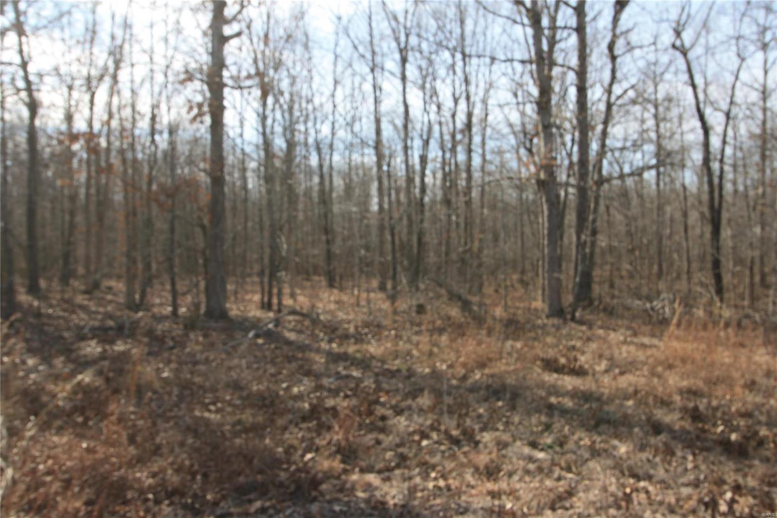 Farm/Ranch/Land for sale – 0  Lot 6 Holiday Hills Dev   Wappapello, MO